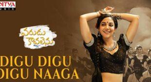 Digu Digu Digu Naaga Lyrics – Varudu Kaavalenu